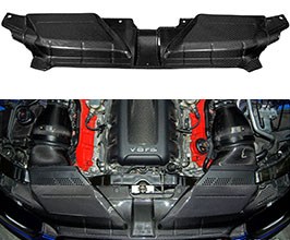 Eventuri Slam Panel Cover (Carbon Fiber)