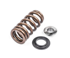 APR Valve Springs with Seats and Retainers for Audi R8 1
