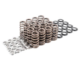 APR Valve Springs with Seats and Retainers for Audi TT MK3