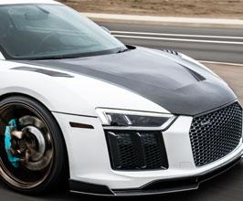Hoods for Audi R8 2