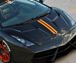 Hoods for Lamborghini Gallardo