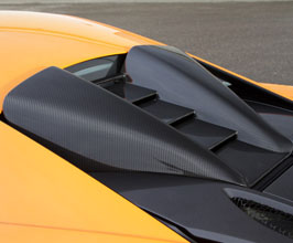 Trunk Lids for McLaren 570S