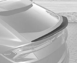 TopCar Design Rear Spoiler (Carbon Fiber)