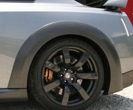 carbon-dry-nissan-gtr-r35-rear-over-fend