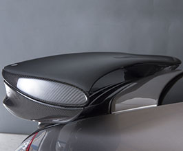Carbon Dry Performance Rear Wing with Engine Lid (Dry Carbon Fiber)